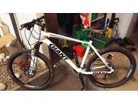 Cash reward for stolen bikes