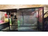 Komodo reptil vivarium and accessories