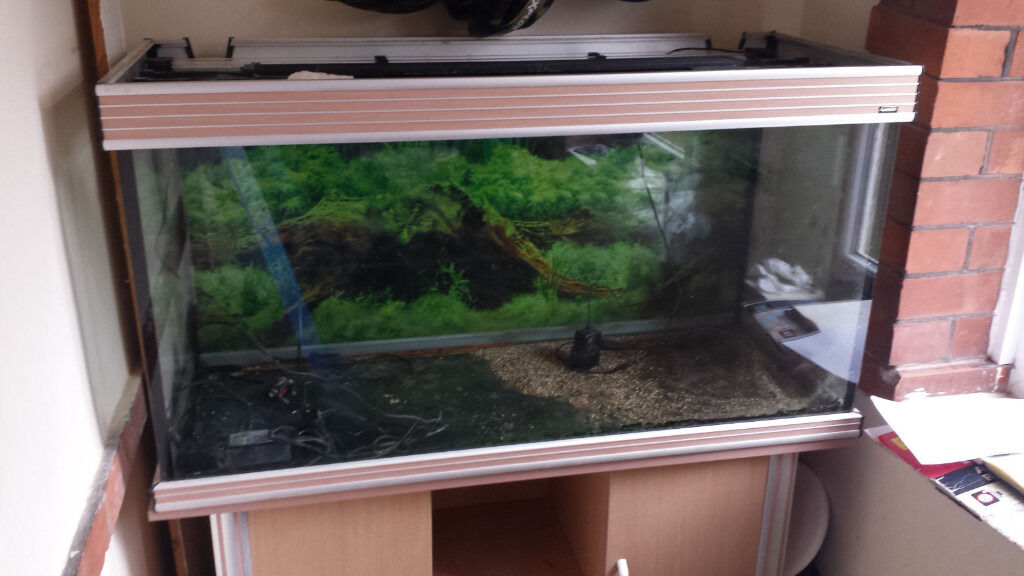 300 Litre Aqua One Aquarium Rox 4ft X 1 2ft