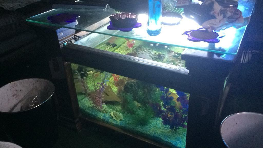 For Sale One Fish Tank Coffee Table In Balsall Heath West Midlands Gumtree