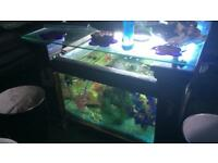 For sale one fish tank coffee table