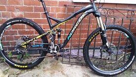 norco sight endurp xc bike (not giant specialized lapierre orange)