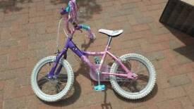 Girls Bike (age 5-8)