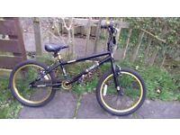 Boys BMX Black and Gold Bike