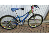 Girls colourful bike with gears, front suspension. Brand Spanking New.