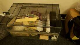 Glass hamster cage for sale
