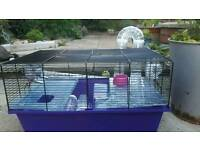 Hamster maze cage