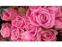 Flower,anniversary,photo,gift,girl,boy,wonan,fresh,creative,hand-made,bouqet,rose,salad,catering