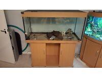 Aquarium Juwel 300