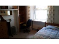 room in East Looe close to centre, own bathroom, garden