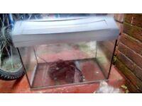 Terra fish tank for sale