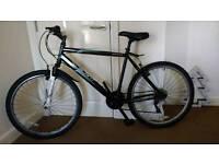 Men Apollo bike