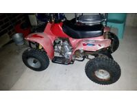 50cc kids quad pitbike engine