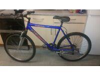 Mens mountain bike