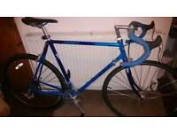 Road Bike - GIANT (Campagnalo) 8kg/Large • 16Gears • Immaculate condition ••