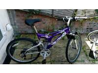 Mountain bike 100£
