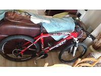 Bianchi kuma mountain bike 27.2 2015