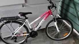 Brand New Lady's mountain bike - 21 gears