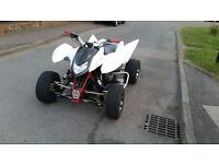 GSX 750 Quad Road Legal not raptor apache quadzilla