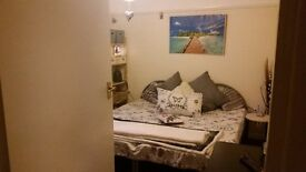 Cosy Double Room in Crystal Palace, London