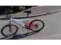 Woodworm Mountain bike