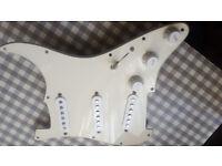 Fender MIM loaded pickguard