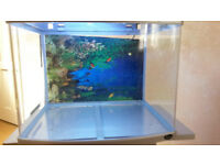 Fish Tank with Separate Stand