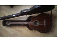 Ibanez 5 String Acoustic Bass
