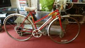 Vintage peugeot push bike bicycle