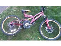 sabra boys bike needs tlc