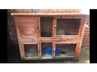 Rabbit Hutch 4ft x 4ft 9 wide