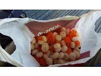 bag of bio balls