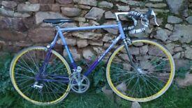 Retro French Purple Peugeot CAD IZOARD Men's Racing Bike Shimano RX100 - Vuelta