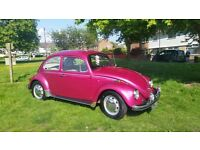 1969 beetle used daily 6 months MOT good running order. Genuine reason for sale. Great fun LHD