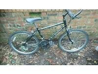 RALEIGH, BOYS MOUNTAIN BIKE,14 INCH FRAME, 24 INCH WHEELS, 18 GEARS GOOD TYRES