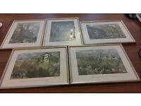 5 framed prints