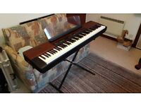 Yamaha p120 Stage Piano in mint condition with custom heavy duty flight case