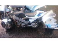 Polini 910 Carena S Mini Moto