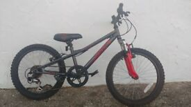 Halfords Apollo Spider Bike 20 inch wheel mountain bike