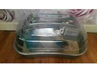 Hamster with cage and food bedding