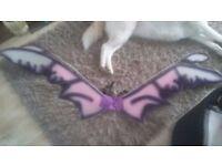 giant fairy/pixie wings