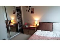 Spacious en-suite double in Wapping with a magical flatmate