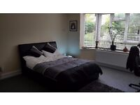 Large double in ground floor centre of town flat!