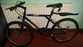 "24"" Mountain bike for sale"