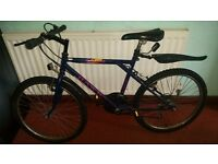 "24"" Mountain bike for sale"