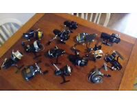 spinning reels for sale
