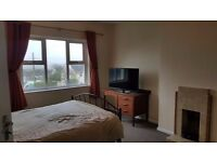 Double room to rent in Newquay.
