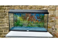 100 liter tank with all the accessories including an external filter or (internal filter)