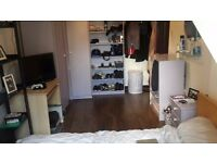 Spaceous double bedroom available in friendly house