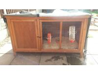 guinea pig hutch+all accessories+2 girl guinea pigs